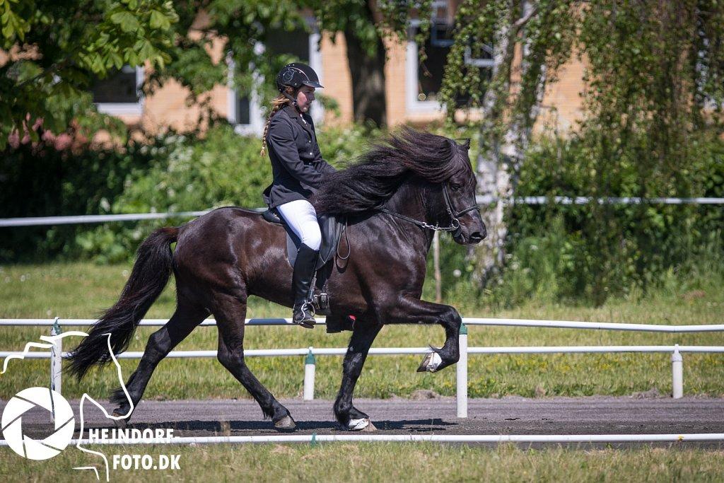 Svendborg Open 2017